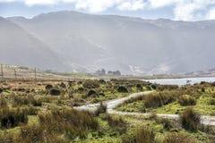 Пустая дорога Ирландия 0005 Стоковое Изображение