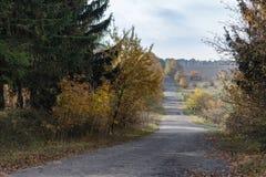 Пустая дорога осени Стоковые Изображения