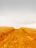 пустая дорога сельская Стоковые Изображения RF