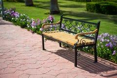 Пустая деревянная скамья около зеленой травы, красивых цветков в парке Стоковые Фото