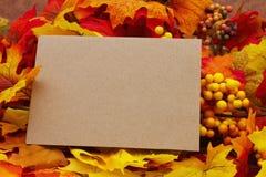 Пустая карточка осени Стоковое фото RF