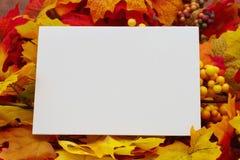 Пустая карточка осени Стоковая Фотография