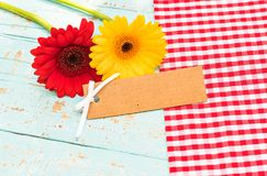 Пустая карточка подарка с красивыми цветками на день дня рождения, матерей или валентинок Стоковая Фотография RF