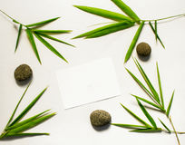 Пустая карточка с тропическими листьями Бамбуковое оформление Курорт или шаблон знамени красоты с местом для текста Стоковые Изображения RF