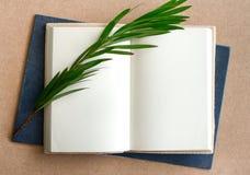 Пустая книга открытая с травой Стоковые Изображения