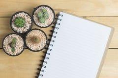 Пустая книга с кактусом на деревянном столе Стоковые Изображения RF