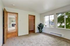 Пустая комната с пальмой Стоковое Изображение