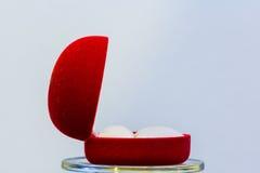 Пустая коробка красного цвета кольца Стоковые Изображения RF