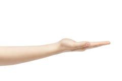 Пустая молодая женская рука для того чтобы держать что-то прямой Стоковые Изображения RF