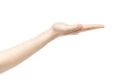 Пустая молодая женская рука для того чтобы держать что-то прямой Стоковое Изображение RF