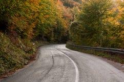 Пустая дорога асфальта через лес осени Стоковая Фотография