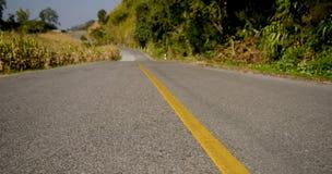 Пустая дорога с стороной леса Стоковая Фотография RF