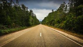 пустая дорога Стоковые Фото