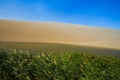 Пустая пустыня в пыльной буре над летом голубого неба стоковые фотографии rf