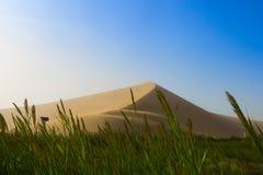 Пустая пустыня в пыльной буре над летом голубого неба стоковые фото