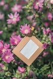 Пустая смертная казнь через повешение рамки на розовых цветках outdoors Стоковые Изображения