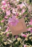 Пустая смертная казнь через повешение рамки на розовых цветках outdoors Стоковая Фотография RF