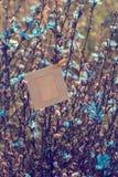 Пустая смертная казнь через повешение рамки на цикории цветков outdoors Стоковые Изображения