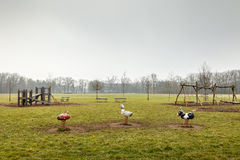 Пустая спортивная площадка парка, внешнее оборудование игры, никто на парке стоковая фотография