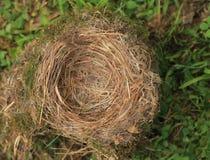 пустое гнездй Стоковое Изображение RF