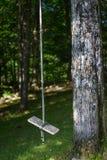 Пустое деревянное качание веревочки около дерева Стоковая Фотография