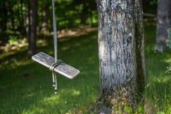 Пустое деревянное качание веревочки около дерева Стоковая Фотография RF