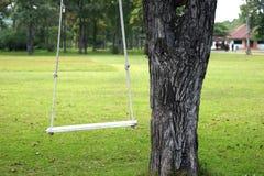 Пустое качание дерева Стоковые Фотографии RF