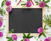 Пустое классн классный, флористическая граница от цветков и травы Стоковое Изображение RF