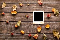 Пустое немедленное фото с розами и лепестками Стоковые Изображения RF