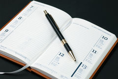 пустое пер дневника Стоковые Изображения RF