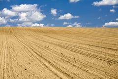 пустое поле Стоковые Изображения
