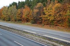 Пустое шоссе через лес осени с красивыми цветами Стоковая Фотография RF
