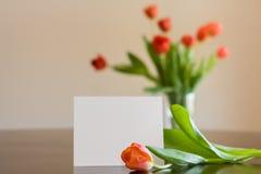 Пустое Notecard с тюльпанами Стоковое Изображение
