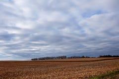 Пустой аграрный ландшафт во время сезона сбора стоковое изображение rf
