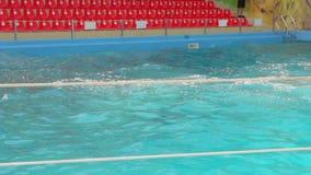 Пустой бассейн с волнами
