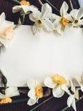 Пустой белый лист альбома с светлыми цветками Стоковое фото RF