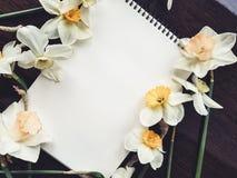 Пустой белый лист альбома с светлыми цветками Стоковые Изображения RF