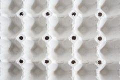 Пустой бумажный поднос яичек Стоковое фото RF