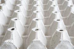 Пустой бумажный поднос яичек Стоковые Изображения