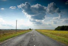 пустой взгляд солнцецветов дороги Стоковые Фотографии RF