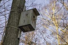 Пустой деревянный birdhouse в парке зимы Стоковые Фотографии RF