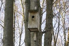 Пустой деревянный birdhouse в парке зимы Frost и деревья без листвы Стоковое Изображение
