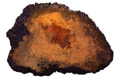 Пустой деревянный шильдик изолированный на белой предпосылке Стоковые Фото