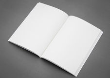 Пустой каталог, брошюра, кассеты Стоковая Фотография RF