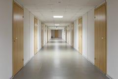 Пустой коридор офиса с много дверей светлой древесины Стоковое фото RF
