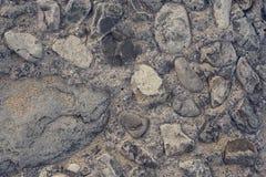 Пустой космос песчаный пляж больших камней Стоковая Фотография RF