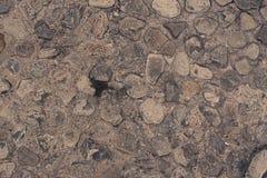 Пустой космос песчаный пляж больших камней Стоковое Фото