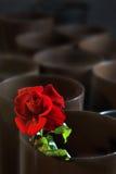 пустой магазин цветка Стоковое Фото