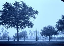 пустой парк Стоковые Фото