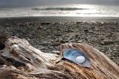 Пустой пляж в Новой Зеландии стоковые изображения rf